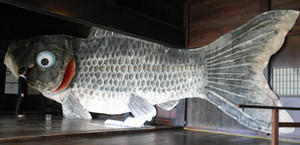 旧西岡家に展示されている、山中和紙でできた巨大こいのぼり=高山市上岡本町の飛騨の里で