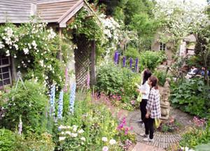 数10種類の花が咲き誇る英国の庭園をイメージしたコテージガーデン=豊田市大林町で