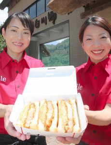 飛騨地域の食材をふんだんに使った飛騨ジューシーカツサンド=白川村飯島の道の駅白川郷で