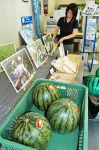 しらやま西瓜などの特産品を販売している白山地区のアンテナショップ=越前市の北陸観光内で