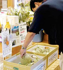 夕張メロンより甘いというお値打ちな中富良野産メロンを品定めする買い物客=砺波市で