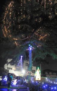 大きなモミの木を飾り、夕闇に光を浮かべたイルミネーション=鈴鹿市平田の塩川病院で