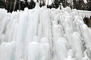 見事な造形美を見せる華菱の樹氷=阿智村浪合で