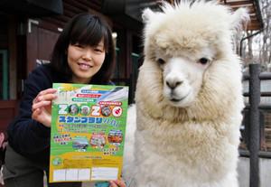 スタンプラリーへの参加を呼び掛ける職員とアルパカ=長野市茶臼山動物園で