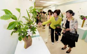 来場者の目を引く力作が並ぶ「いしかわ四季の花協会展」の会場=金沢市のめいてつ・エムザで