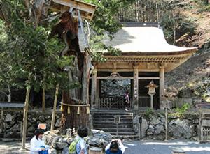 山あいに、どっしりとした雰囲気でたたずむ峰定寺