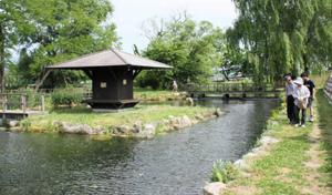癒やされる「安曇野わさび田湧水群公園」=いずれも長野県安曇野市で