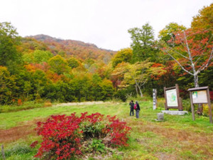 紅葉シーズンを迎えた奥裾花自然園=長野市で