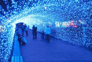 光のアーチで思い思いに楽しむ住民ら=敦賀市の金ケ崎緑地で