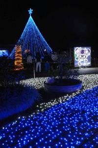 2万個を超えるLEDで彩られた会場=神戸町前田のばら公園いこいの広場で