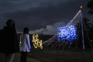 富山国際大東黒牧キャンパス内で始まった「冬のイルミネーション」=富山市東黒牧で