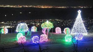 湾岸の夜景をバックに輝く色とりどりのイルミネーション=西尾市東幡豆町で