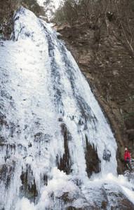 連日の冷え込みで氷結し、美しい姿を見せた大日滝=名張市の赤目四十八滝で