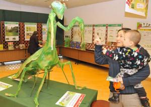 巨大なカマキリの模型をながめる親子=石川県ふれあい昆虫館で