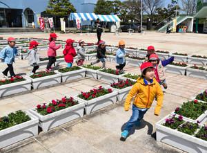 花の迷路を走り抜ける園児ら=射水市の海王丸パークで