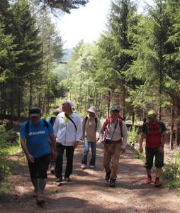林道を散策する地元観光関係者ら=木曽町開田高原で