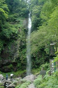夏の観光シーズンが始まった阿弥陀ケ滝=郡上市白鳥町で