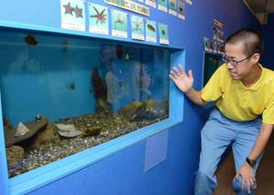 伊勢志摩地域に生息している魚類、貝類を集めた展示=志摩市阿児町神明の志摩マリンランドで
