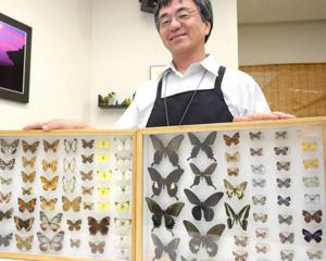 昆虫標本を初公開する山門さん=熊野市立図書館で