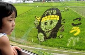車窓から見える田んぼアート=甲賀市水口町牛飼で