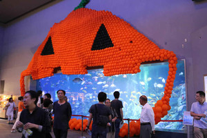 2000個の風船でカボチャ形に彩られた大型水槽=鳥羽市鳥羽で