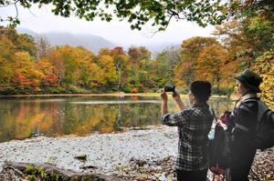 色づき始めた紅葉と刈込池を写真に収めるハイカーら=大野市上打波で