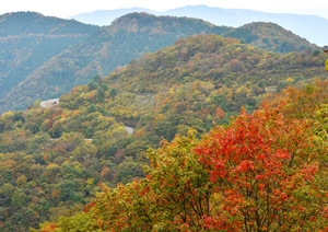 山肌が鮮やかに色づき、紅葉シーズンを迎えた伊吹山=滋賀・岐阜県境で