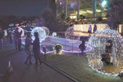 鮮やかに彩られるイルミネーションを楽しむ来場者=浜松市西区で