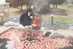 多くのリンゴが浮かぶ露天風呂=高森町の信州たかもり温泉御大の館で