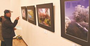 信州の美しい四季の作品などが並ぶ会場=安曇野市のイオン豊科店で