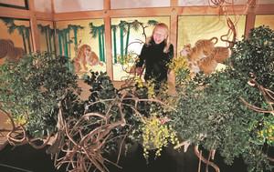 虎の障壁画に囲まれた玄関二之間で作品を仕上げる華道家の假屋崎省吾さん=名古屋城本丸御殿で