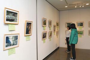 学芸員や県自然保護協会員らが撮影した作品が並ぶ写真展=立山町芦峅寺の立山カルデラ砂防博物館で