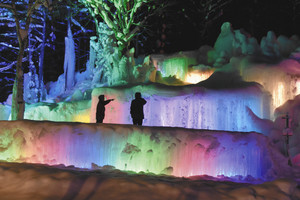 色鮮やかにライトアップされる氷点下の森=高山市朝日町胡桃島で