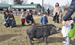 人気者のブーコと触れ合う親子ら=福井市山奥町の足羽山公園遊園地で