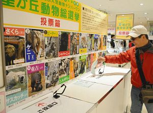 お気に入りの動物に投票する買い物客=名古屋市千種区の名古屋三越星ケ丘店で