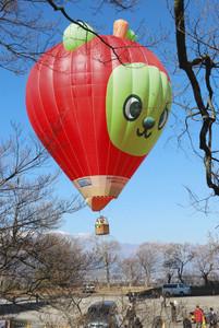 空に浮かび上がる熱気球=伊那市高遠町で