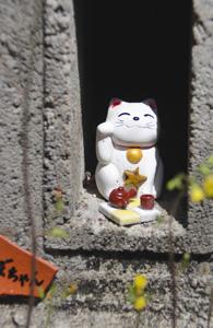 やきもの散歩道の中に隠れている、しあわせのまねき猫=常滑市栄町で