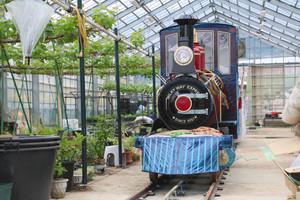 6月から運行を始める小型電気機関車「銀河鉄道ミルキーウェイ」=米原市のローザンベリー多和田で