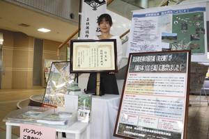 国吉城の歴史を伝えるパネルや続日本100名城の認定証など=美浜町役場で