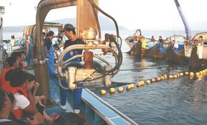 大敷網漁の様子を間近で見学する参加者たち(左)