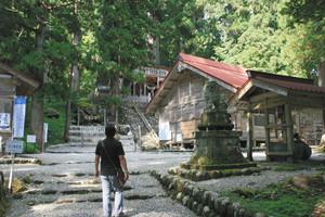 杉の大木に囲まれた白山中居神社の境内