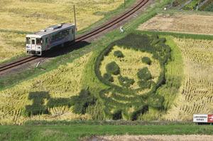 明知鉄道の線路横の田んぼに浮かび上がった「エーナ」の図柄=恵那市山岡町田沢で