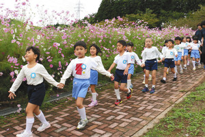 コスモス畑の散策を楽しむ園児ら=砺波市五谷で