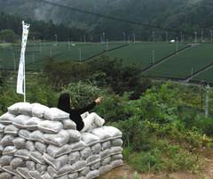 茶園が一望できる土のうのソファ=掛川市東山
