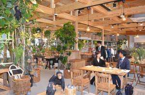 さまざまな観葉植物が並ぶ店舗棟の内部=草津市の草津川跡地公園「ai彩ひろば」で