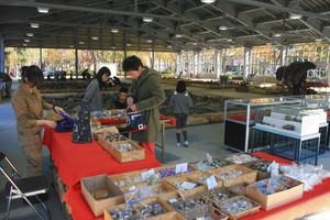 化石のお土産や展示コーナーもある=いずれも福井県大野市の「ホロッサ!」で