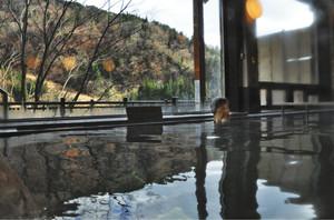 新源泉に切り替わった白峰温泉総湯=白山市白峰で