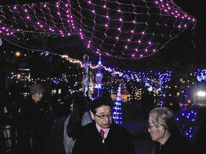 電飾で美しく輝く並木道=飯田市で