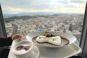 古墳を見下ろしながら食べるGORYOカレーとGORYOラテ=堺市役所展望ロビーで