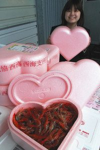 バレンタインデーに向け、生きた甘エビが詰め込まれたハート形の箱=富来漁港で